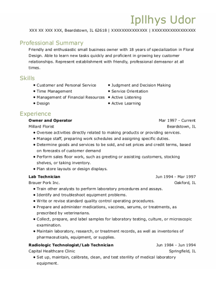 Owner and Operator resume example Illinois