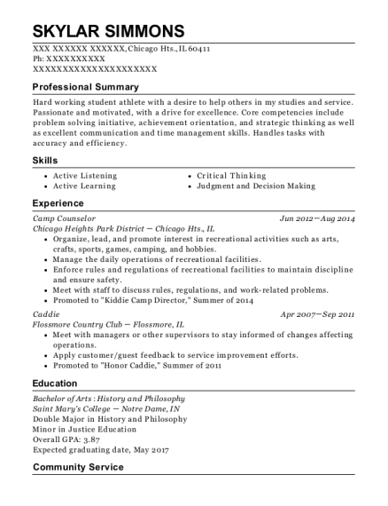 Camp Counselor resume template Illinois