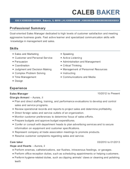 Sales Manager resume format Illinois