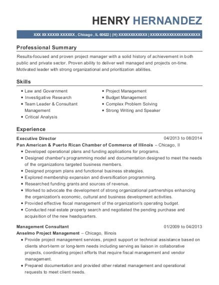 Executive Director resume template Illinois