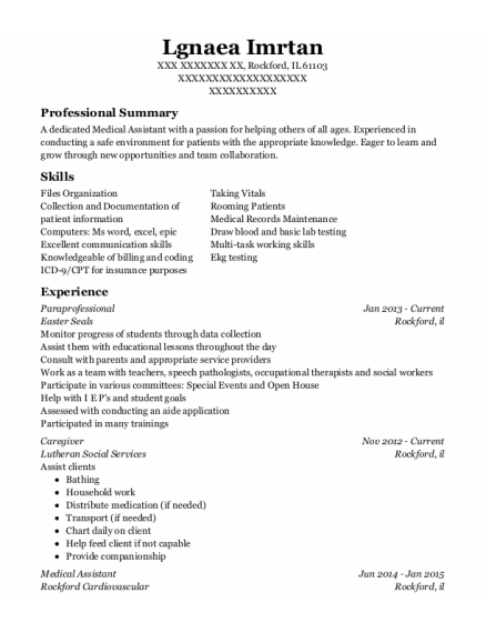 Paraprofessional resume example Illinois