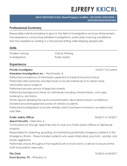 Private Investigator resume example Illinois