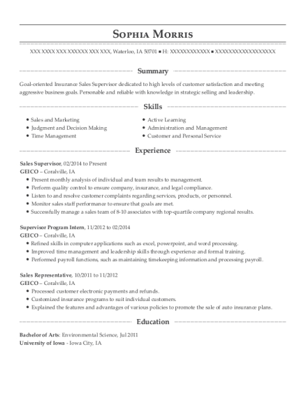 Sales Supervisor resume example Iowa