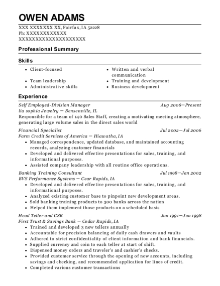 Self Employed Division Manager resume template Iowa