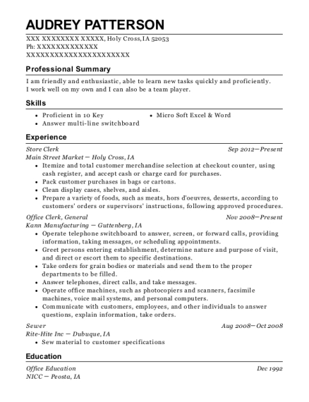 Store Clerk resume example Iowa