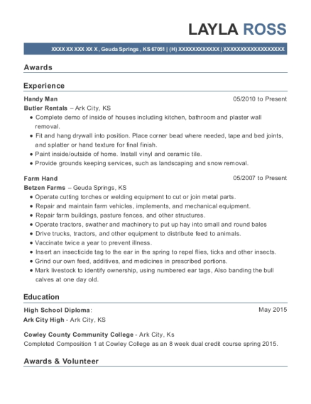 Handy Man resume template Kansas