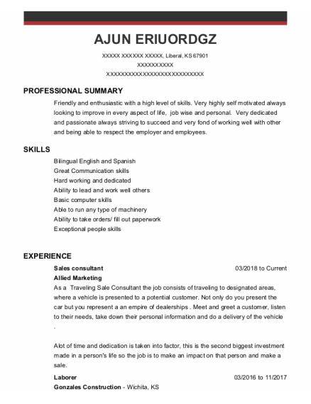 Sales Consultant resume template Kansas