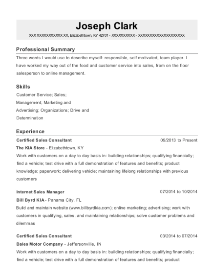 Certified Sales Consultant resume template Kentucky