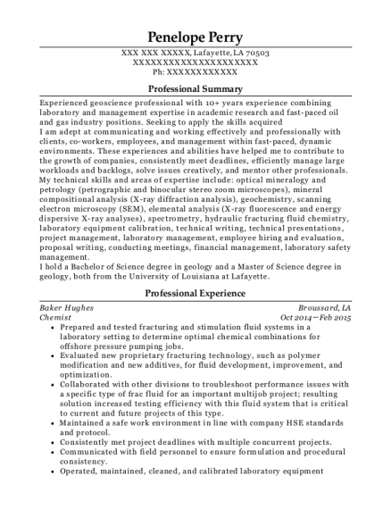 Baker Hughes Petrophysicist Consultant Resume Sample