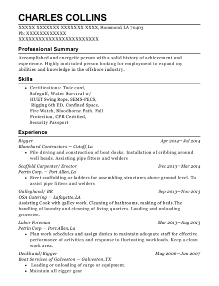 trade team rigger resume sample