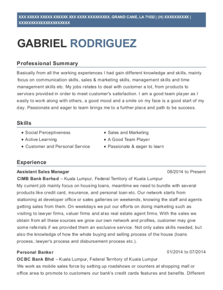 Assistant Sales Manager resume template Louisiana