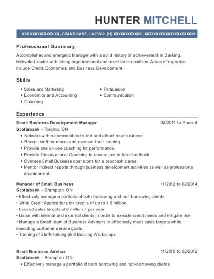 Small Business Development Manager resume example Louisiana