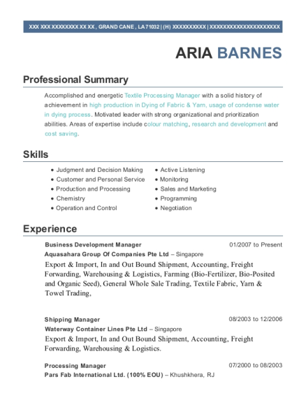 Business Development Manager resume template Louisiana