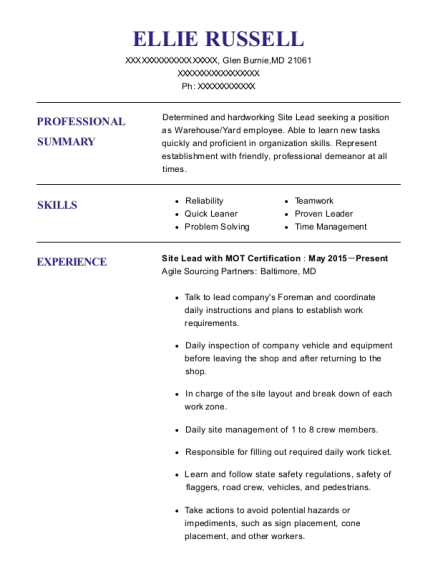 Site Lead with MOT Certification resume example Maryland