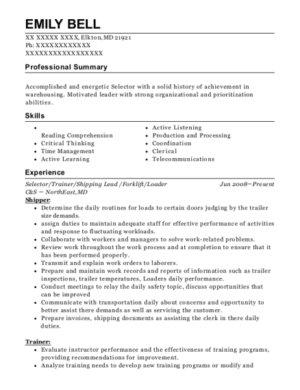 publix warehouse selector resume sample