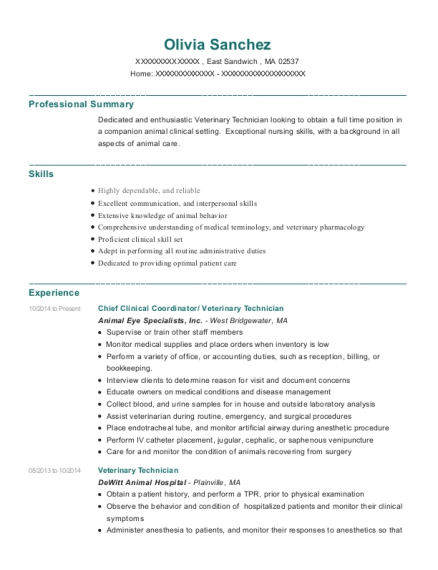 Chief Clinical Coordinator resume template Massachusetts
