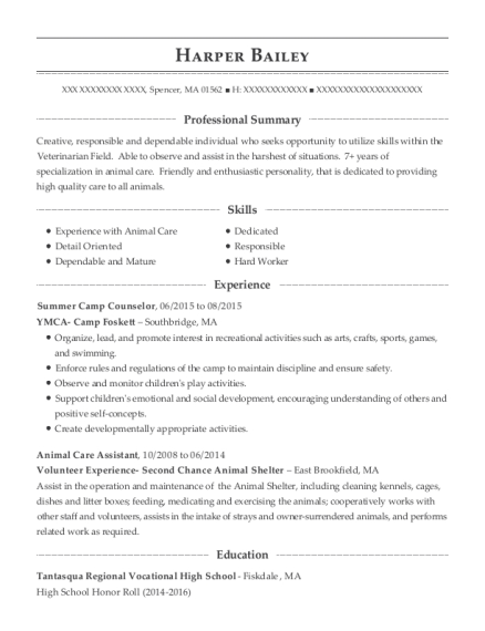 Summer Camp Counselor resume sample Massachusetts