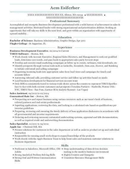 Business Development Executive resume format Massachusetts