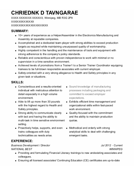 Business Development resume example MB