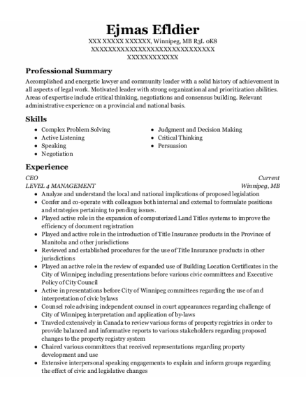 CEO resume example MB