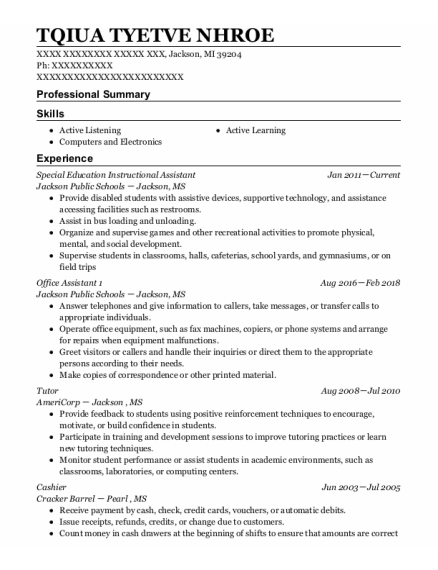 Special Education Instructional Assistant resume format Michigan