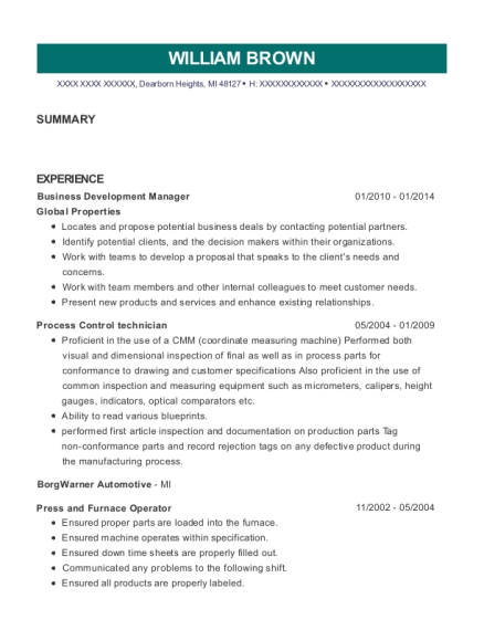 Business Development Manager resume sample Michigan