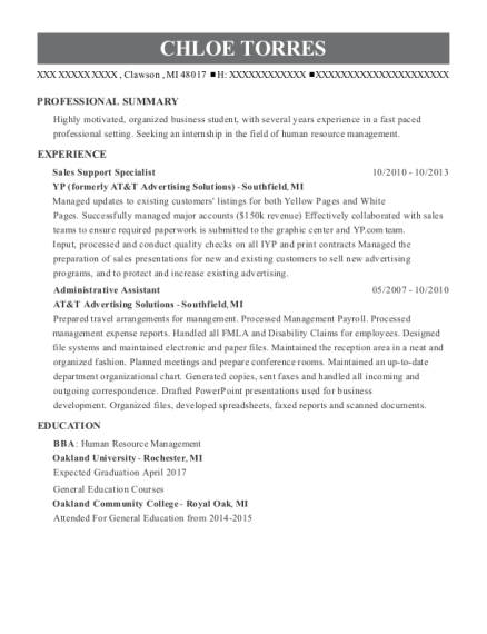 Sales Support Specialist resume template Michigan