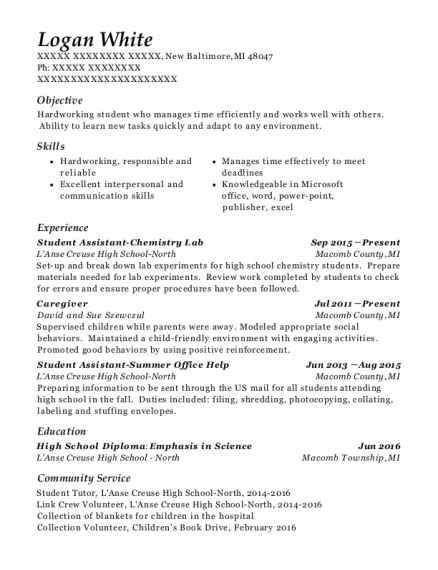 Student Assistant Chemistry Lab resume example Michigan