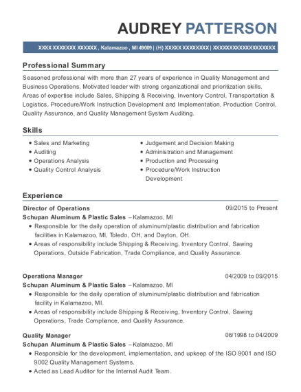 Director of Operations resume example Michigan