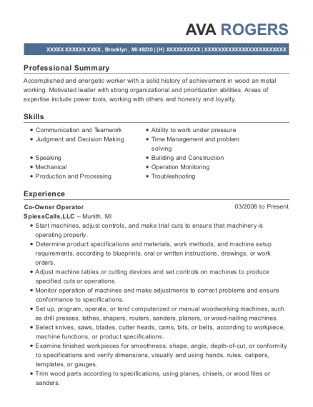 Co Owner Operator resume sample Michigan