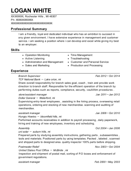 Branch Supervisor resume template Michigan