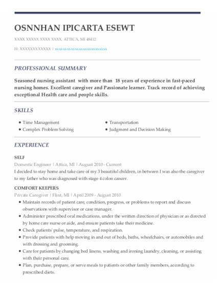 Domestic Engineer resume example Michigan