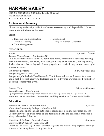 Owner resume example Michigan
