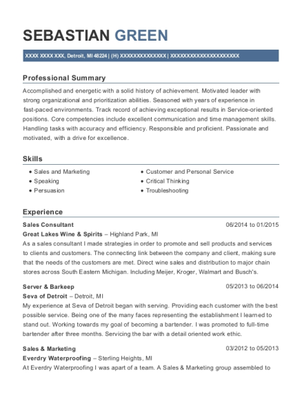 Sales Consultant resume template Michigan