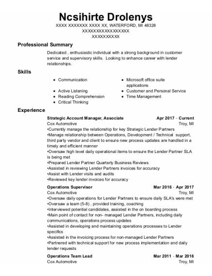 Strategic Account Manager resume template Michigan