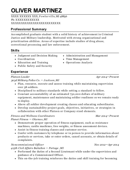 Platoon Leader resume example Michigan