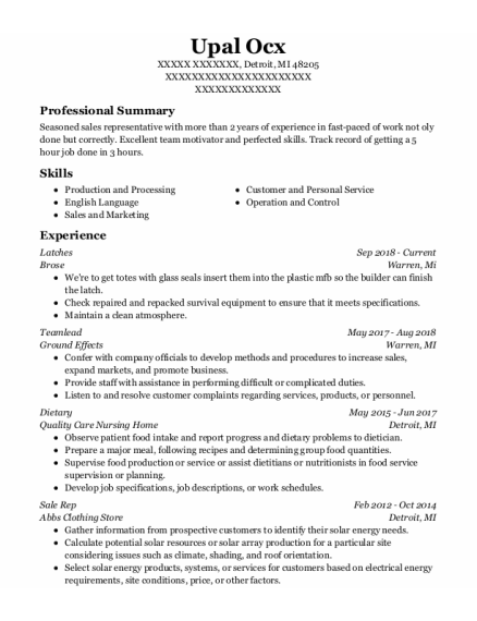Teamlead resume example Michigan