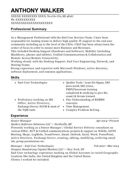 Senior Manager resume example Michigan