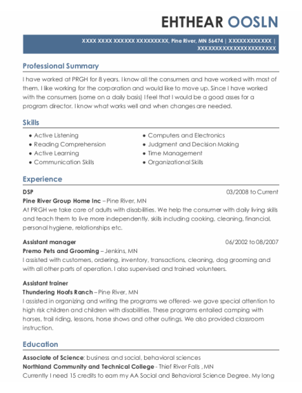 DSP resume template Minnesota