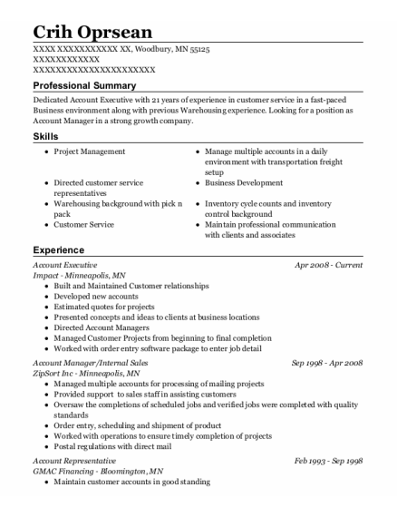 Account Executive resume example Minnesota