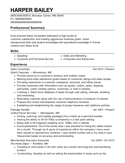 Sales Consultant resume sample Minnesota