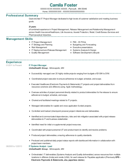 IT Project Manager resume format Minnesota