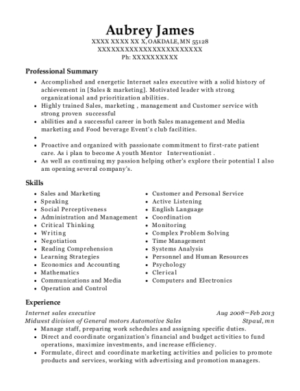 Internet sales executive resume sample Minnesota
