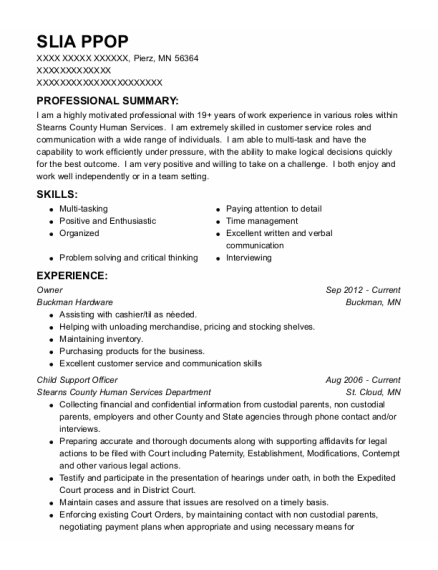 Owner resume sample Minnesota