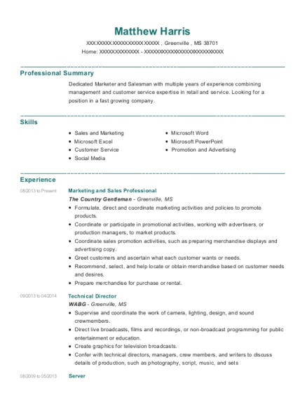 Marketing and Sales Professional resume template Mississippi