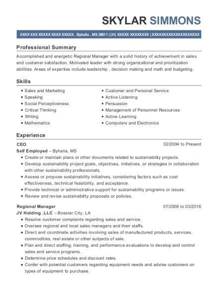CEO resume format Mississippi