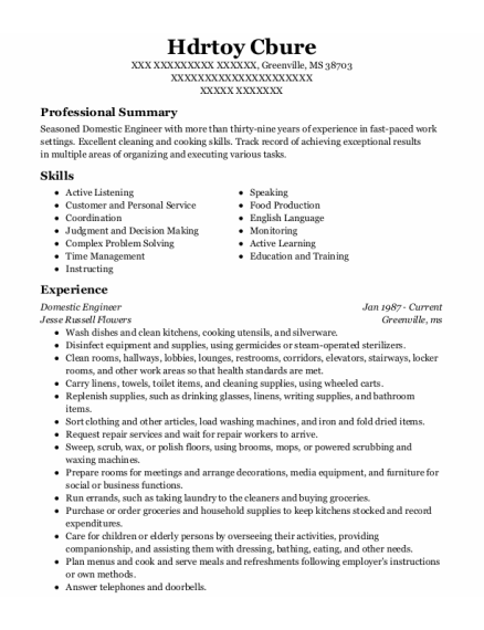 Domestic Engineer resume example Mississippi