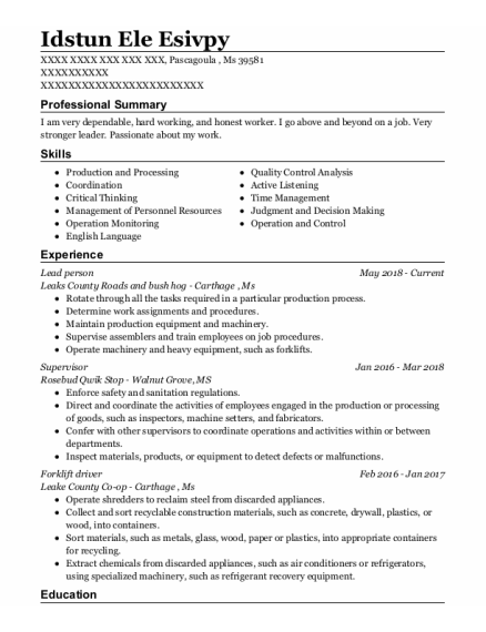 Lead Person resume template Mississippi