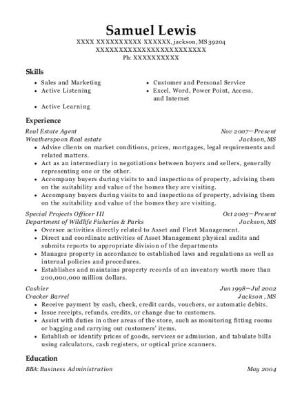 Real Estate Agent resume template Mississippi