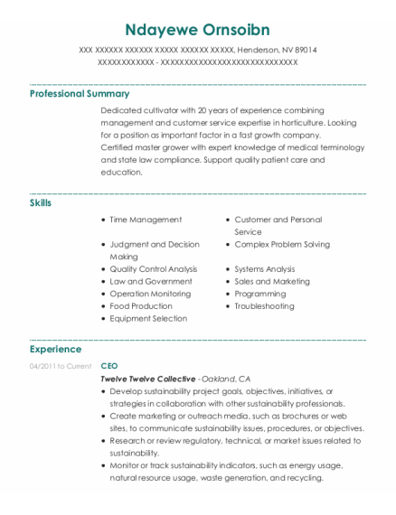 CEO resume example Nevada